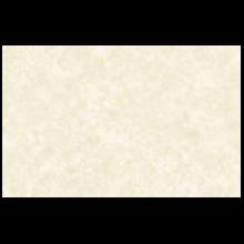 4166-60 / PAMPAS